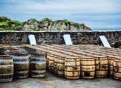 Whisky Fasser iStock821330428 web